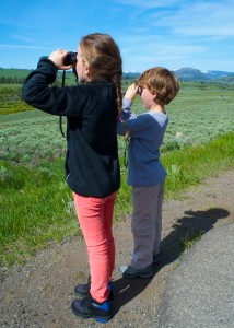 Ella and Riley look for grizzly bears.