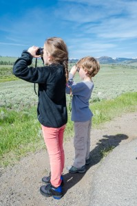 Ella and Riley look for wolves in Yellowstone.