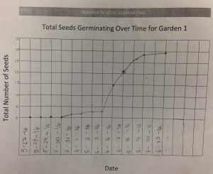 Germination Data for Garden 1