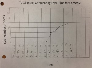 Germination Data for Garden 2